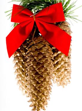 Из еловых шишек получатся прекрасные украшения для хвойной красавицы